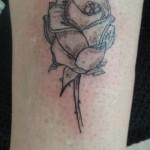 rose tatouée